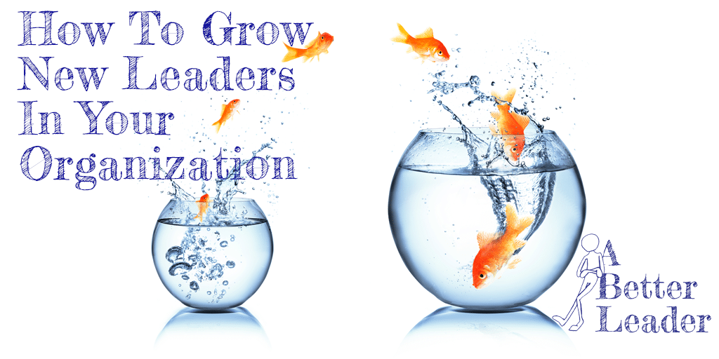 How to grow new leaders